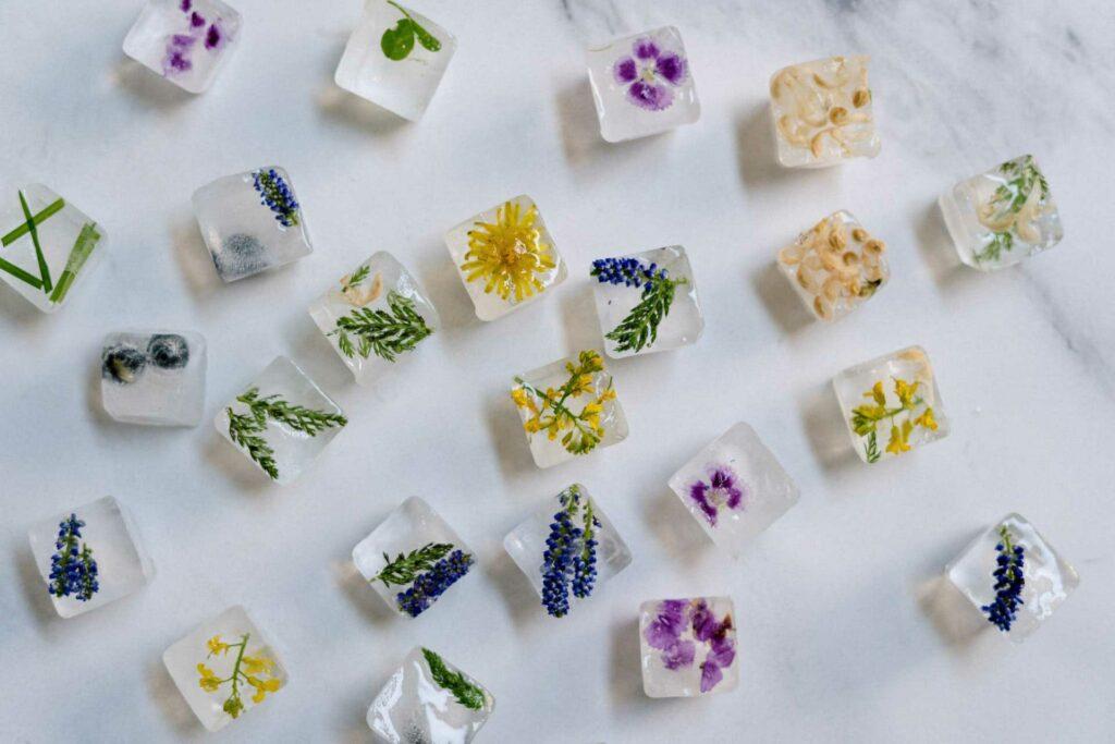 Eiswürfel, mit gefrorenen Blüten gefüllt