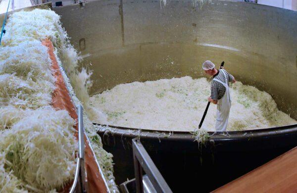 Ein Mann stampft Sauerkraut