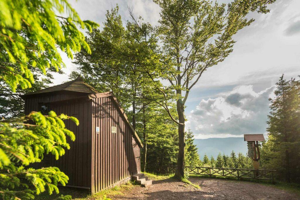 Hütte zwischen Bäumen
